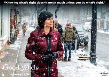 92f50270541212d2b208de5569185ce1--the-good-witch-witch-series