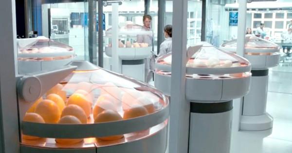 hammond-creation-lab