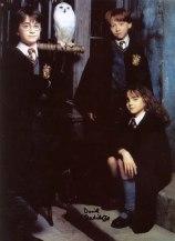 2001 Harry Potter a Kamen mudrcov Promo 13