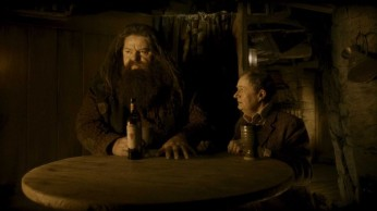 2008_harry_potter_and_the_half_blood_prince_045