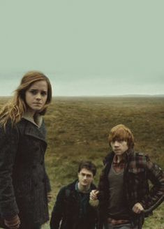 bd6be7bbf01cab038ec27f81095b3499--hermione-granger-deathly-hallows-harry-potter-and-the-deathly-hallows-part-