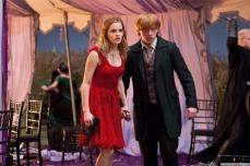 Deathly-Hallows-Movie-Stills-harry-potter-26598345-1280-853