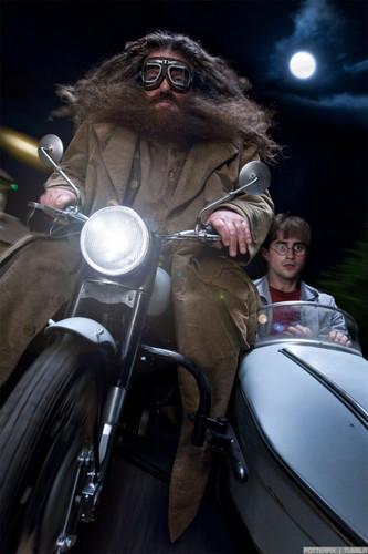 Deathly-Hallows-Part-1-Movie-Still-harry-potter-27108087-333-500