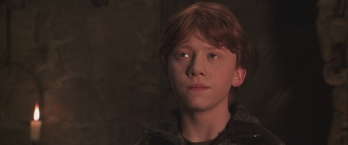 Harry-Potter-And-The-Chamber-Of-Secrets-ronald-weasley-17252601-500-208