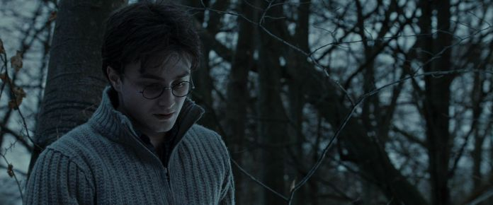 Harry-Potter-and-the-Deathly-Hallows-Part-1-BluRay-harry-potter-20891868-1920-800