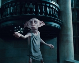 harry-potter-and-the-deathly-hallows-part-1-dobby_7729168-625x500