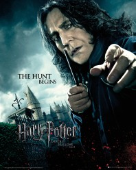 harry-potter-and-the-deathly-hallows-part-1-severus-snape-i28592