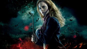 harry-potter-and-the-deathly-hallows_-part-1-wallpapers-29600-9125042
