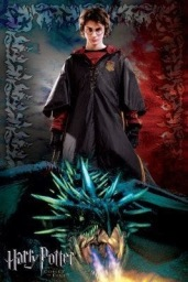 Harry Potter and the Goblet of Fire 8