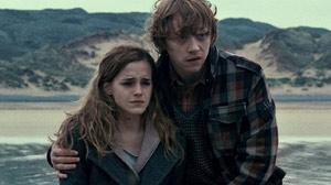 ht_ron_hermione_10118_wmain