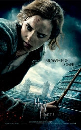 the-Deathly-Hallows-Part-1-Posters-harry-potter-15960483-800-1280